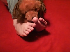 Boy Playing With Feet